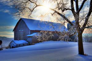 Winter Starshine by VFrance