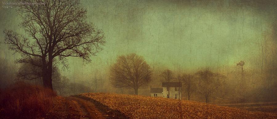 November's Slumber by VFrance