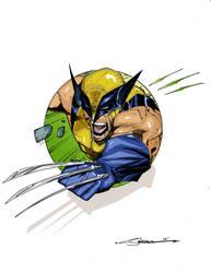 Wolverine2  by Steven Sanchez