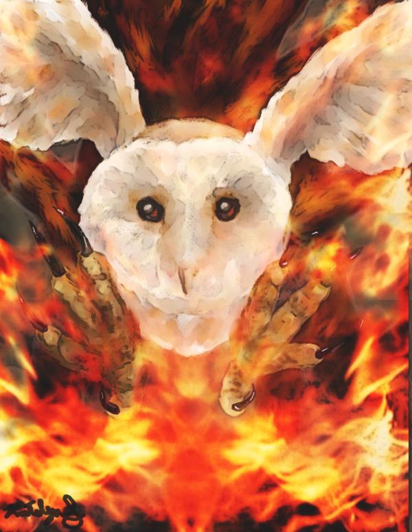 Guardian of GaHoole by YukiKurenai