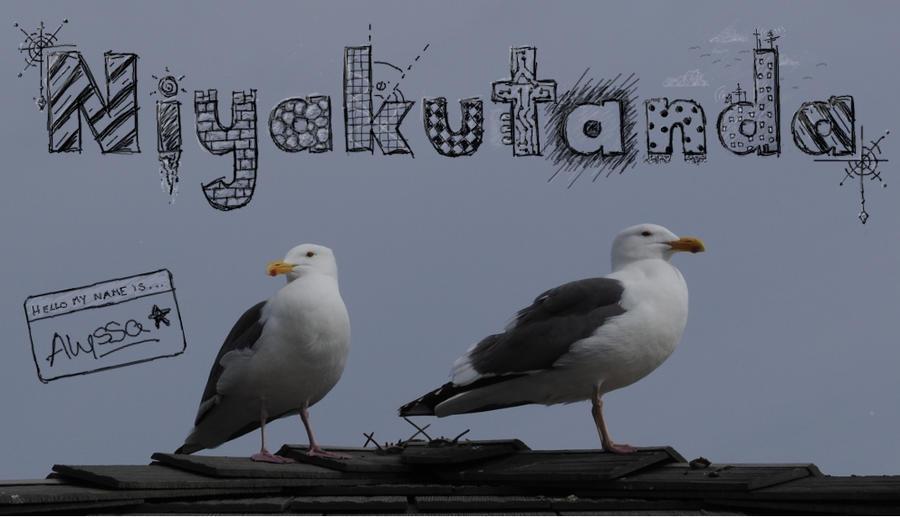 Niyakutanda's Profile Picture
