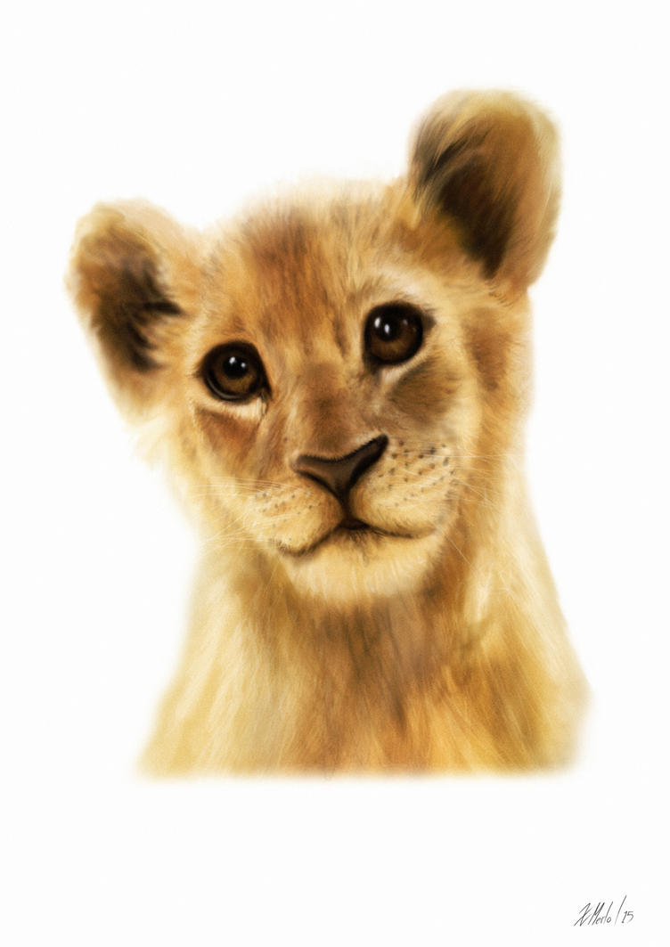 Lion Cub by xavi-M