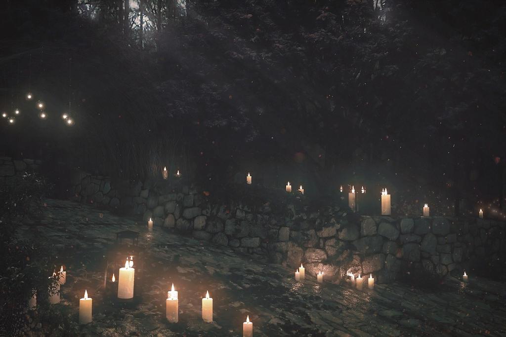 Path to Lothlorien by xavi-M