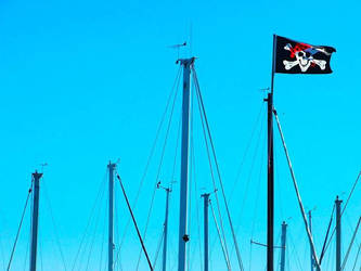 Pirate Flag by crazyblackwearer