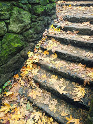 Witches Castle Steps