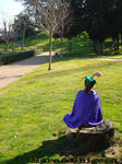 Cherrim uses morning sun by sara