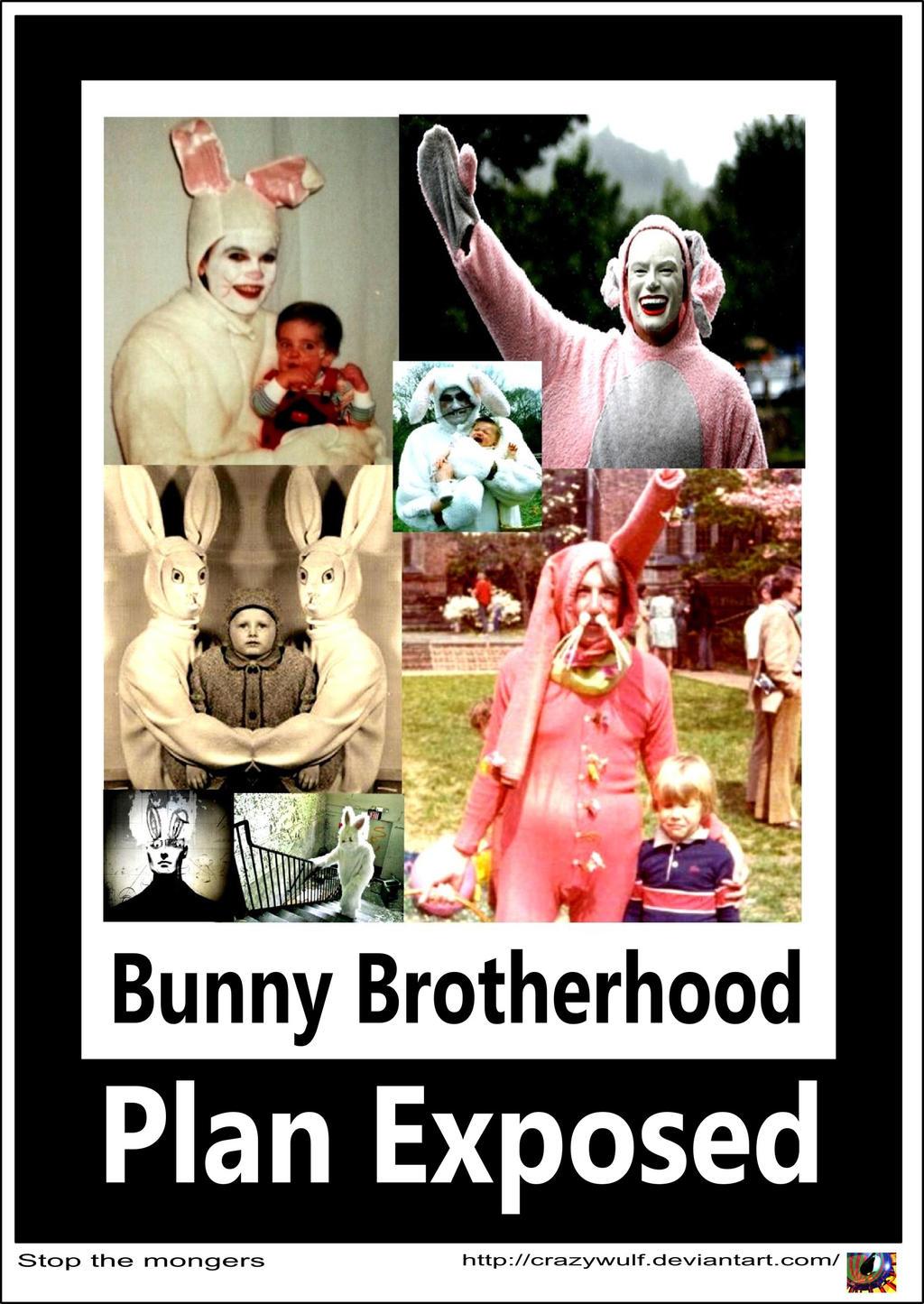 Bun Bun Brotherhood by Crazywulf