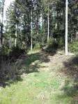 Das Sulzbachtal von oben #2