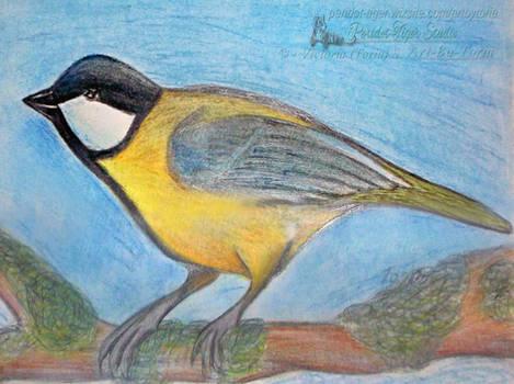 Estonian Great Long Tailed Tit (Bird)