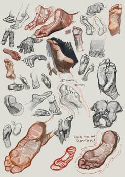 Feet Studies 6nov