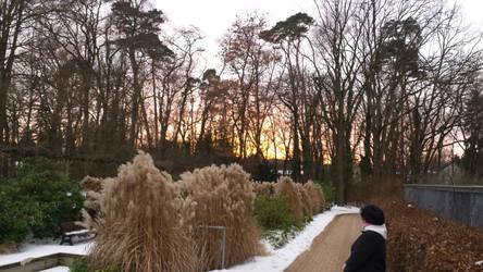 Winter Walk by Wateimosys