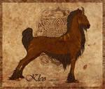 Kleo CARD