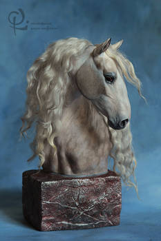 Andalusian horse.