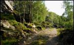 Walking in rocky land