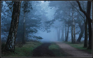 Going on a blue morning walk by jchanders