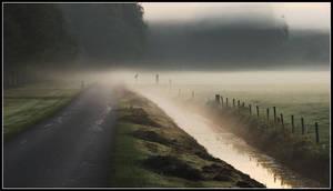 On a misty course