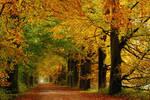 October splendour again