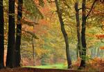 On the autumnal path again