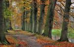 When autumn was at its best