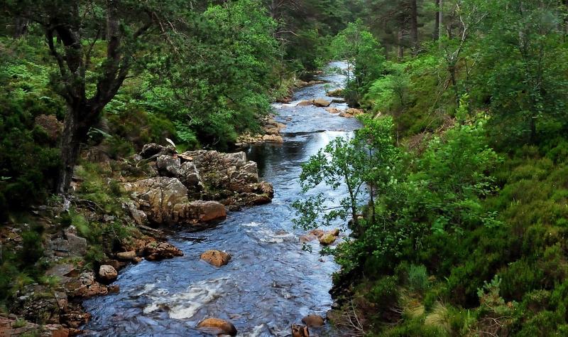 A rocky little river