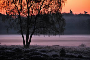 Early morning mystery by jchanders