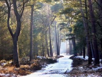 Still a touch of winter by jchanders