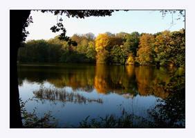In autumn wonderland by jchanders