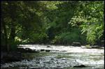 A cool little river