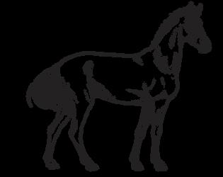 F2U Horse Lineart by AMillionLights