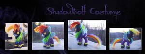 My Little Pony Shadowbolt Rainbow Dash Custom 2 by kaizerin