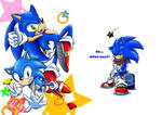 SONIC 25th fanbook cover