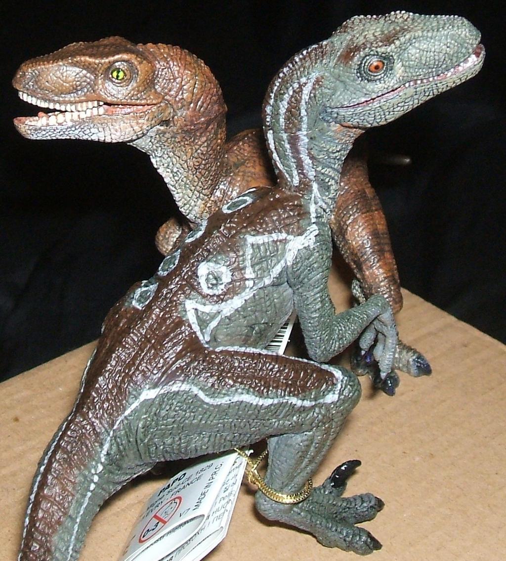 Save the Raptor - 2005 2016 by Mechanic-Star