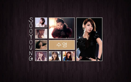 Tile WP: Sooyoung