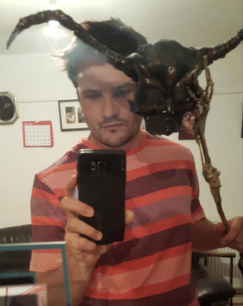 Jareth's goblin Masquerade mask by Bubblypies