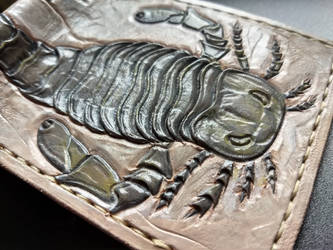 Sea scorpion fossil leather wallet  close up by Bubblypies