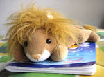 Aslan Lion pet XD