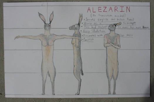 Alezarin Reference Sheet