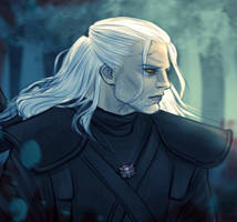 0006 The Witcher X