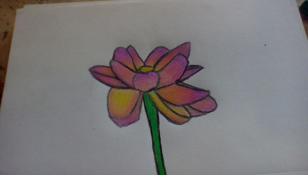 Sunset Flower by sassrome88
