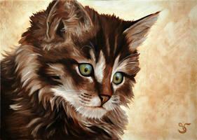 Little Cat V by StephanieVALENTIN