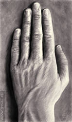 Hand by StephanieVALENTIN