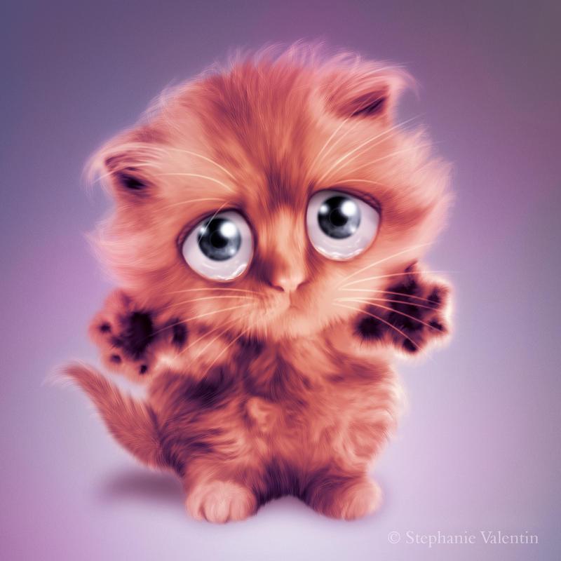 Hug me Kitty by StephanieVALENTIN