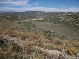 Sagebrush Valley