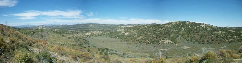 Sagebrush Panorama