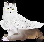 Bobtailed Griff by AlphaStryx