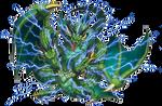 Thunder Dragon Lord