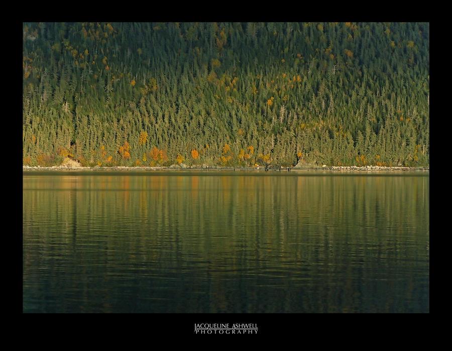 Autumn Light by Isquiesque