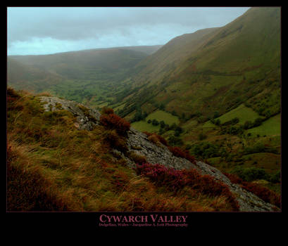 Cywarch Valley