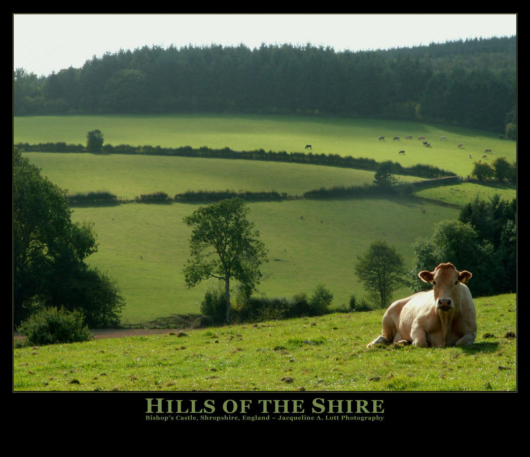 Hills of the Shire by Isquiesque