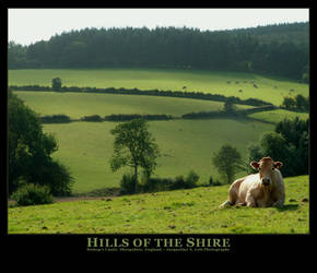 Hills of the Shire